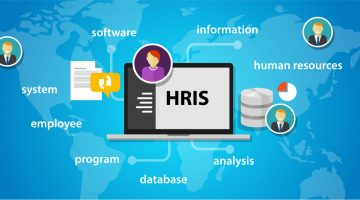 How to Choose HR Software for Your Business?